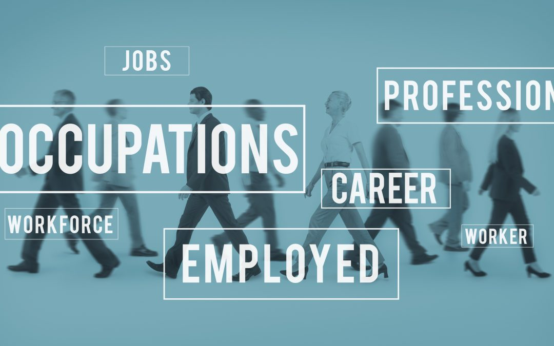 Types of Employment Pass