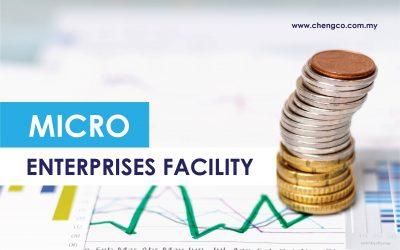 Micro Enterprises Facility (MEF)