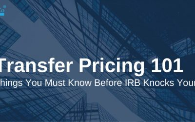 Is that SMEs need to Prepare Transfer Pricing Documentation?